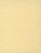 2.72m x 11m Background Paper Champagne 65