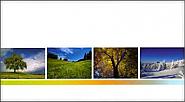 Pochettes photos 10x15cm 4 saisons (500)
