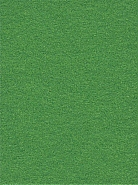 2.72m x 11m Background Paper Chroma Green 54