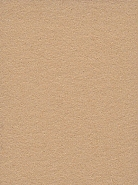 2.72m x 11m Background Paper Barley 66