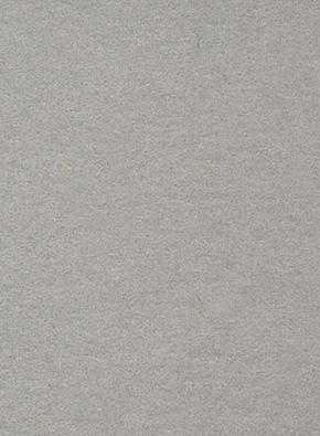 2.72m x 11m Background Platinum 23